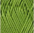 BEGONIA 5352 светло-зеленый