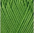 BEGONIA 6332 зеленый