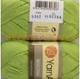 BEGONIA 5352 светло-зелёный