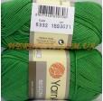 BEGONIA 6332 зелёный